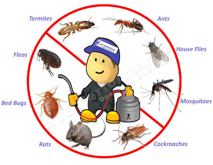 Things To Remember About Pest Control